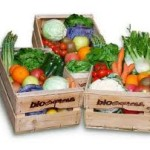 Ideas to open a store :  open a shop of organic products, how can you differentiate your business.